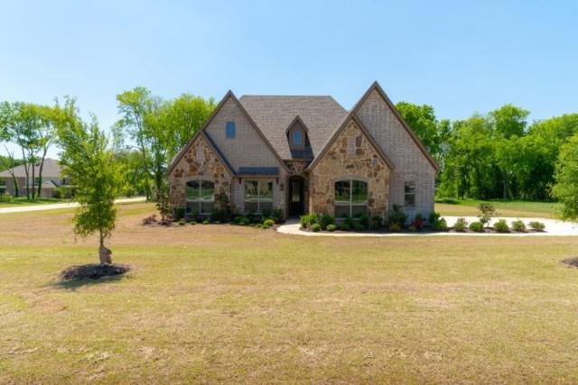 1705 Sara Cove, Lucas, TX 75002 (MLS #13828172) :: Team Hodnett