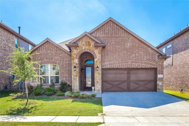 2030 San Marino Lane, Lewisville, TX 75077 (MLS #13829154) :: The Real Estate Station