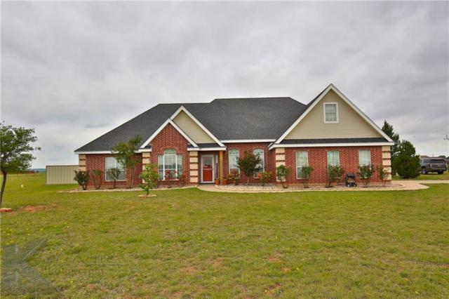 222 County Road 142, Tuscola, TX 79562 (MLS #13830429) :: The Tonya Harbin Team
