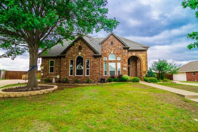 716 Country Meadow Drive, Murphy, TX 75094 (MLS #13833113) :: Team Hodnett