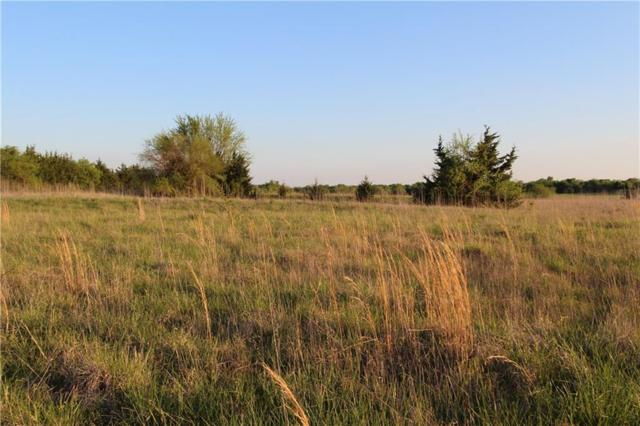 25500 County Road, Roxton, TX 75477 (MLS #13833980) :: The Good Home Team