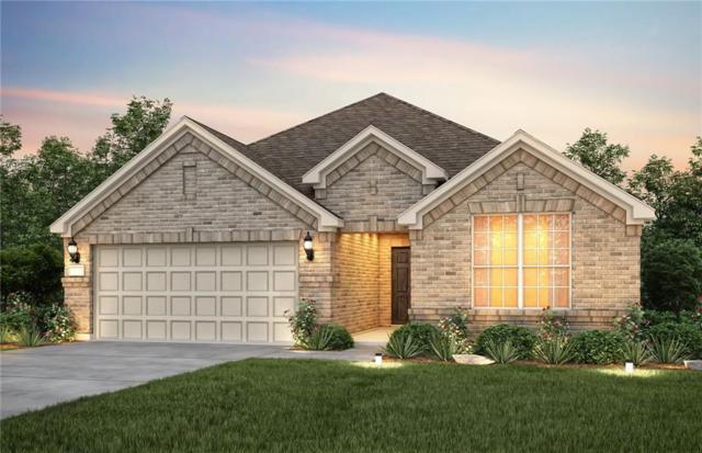 1225 Rocky Mountain Court, Celina, TX 75009 (MLS #13834423) :: Magnolia Realty