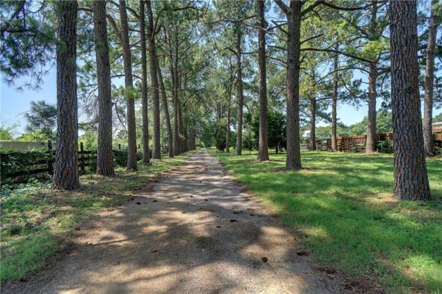 2929 SE Sagebrush Drive, Flower Mound, TX 75022 (MLS #13834762) :: RE/MAX Town & Country
