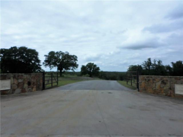 Lot 6 Calle Encino Lane, Millsap, TX 76066 (MLS #13836524) :: The Real Estate Station