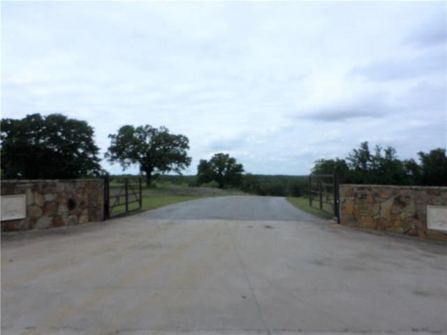 Lot 7 Calle Encino Lane, Millsap, TX 76066 (MLS #13836564) :: The Real Estate Station