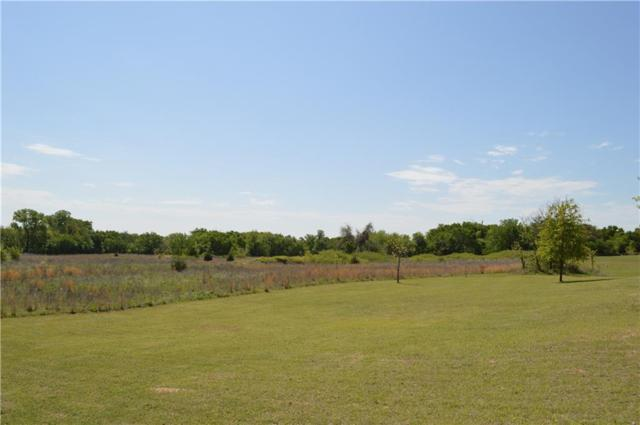 1405 Jay Bird Road, Springtown, TX 76082 (MLS #13836719) :: Baldree Home Team