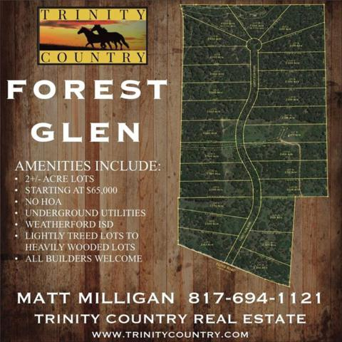 Lot 13 Forest Glen Road, Weatherford, TX 76087 (MLS #13837250) :: RE/MAX Town & Country