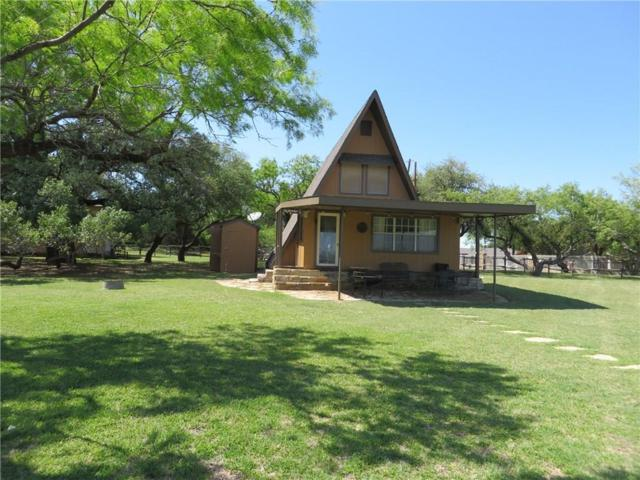 1006 Possum Point, Possum Kingdom Lake, TX 76449 (MLS #13839612) :: Magnolia Realty