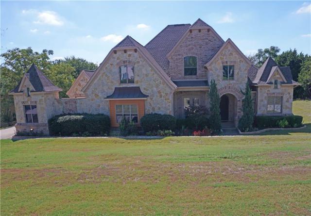 1305 Overlook Circle, Cedar Hill, TX 75104 (MLS #13839777) :: Team Hodnett