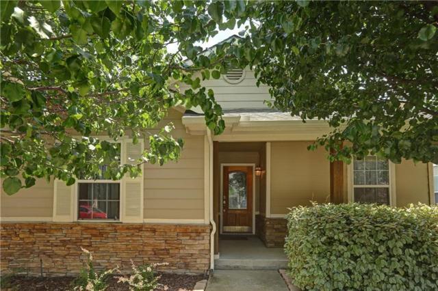 6809 Cotton Seed Drive, Mckinney, TX 75070 (MLS #13840202) :: Frankie Arthur Real Estate