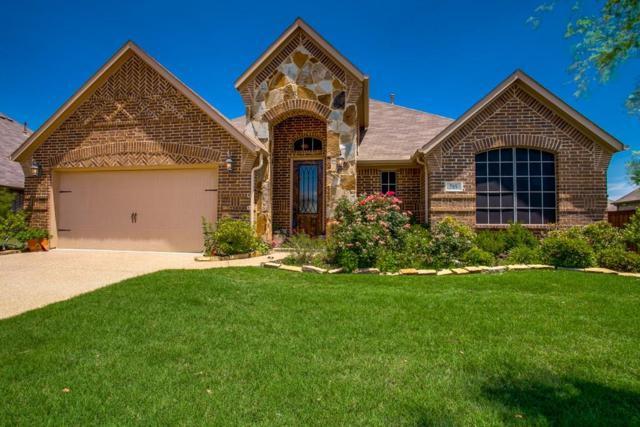 785 Sycamore Trail, Forney, TX 75126 (MLS #13840287) :: Team Hodnett