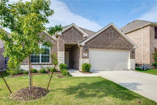 2344 Leeward Place, Little Elm, TX 75068 (MLS #13841126) :: Magnolia Realty