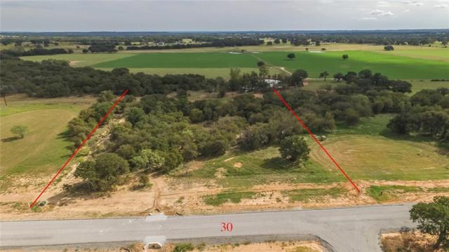30 Lazy Creek Crossing, Brock, TX 76087 (MLS #13842035) :: RE/MAX Town & Country