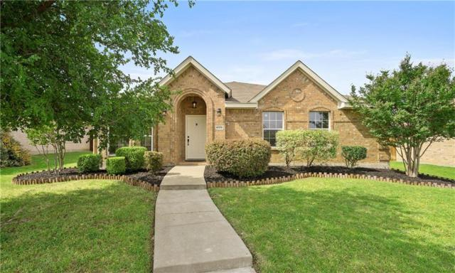 4059 Sun King Lane, Frisco, TX 75033 (MLS #13842562) :: Team Tiller