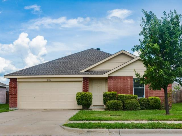 2704 Plantation Drive, Anna, TX 75409 (MLS #13843220) :: RE/MAX Town & Country