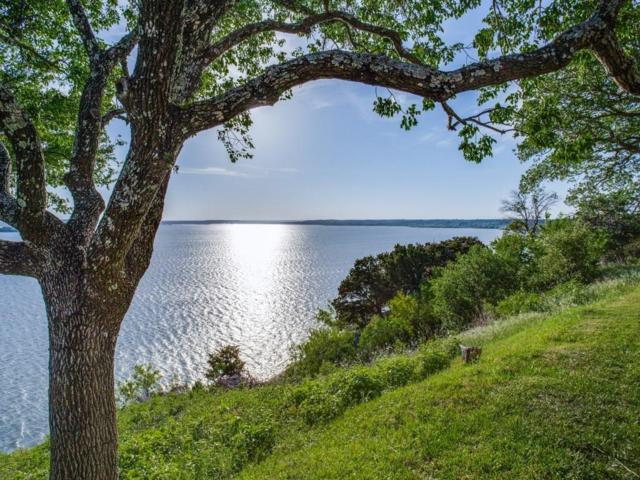 19082 White Bluff Drive, Whitney, TX 76692 (MLS #13843379) :: RE/MAX Performance Group