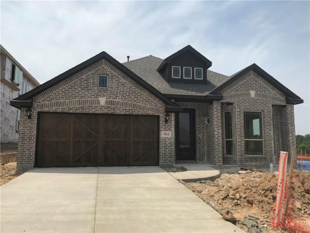 904 Hodge Street, Mckinney, TX 75071 (MLS #13843462) :: Magnolia Realty
