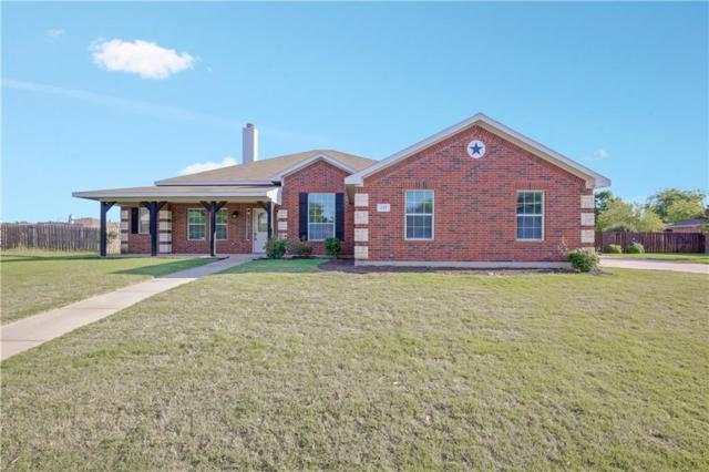225 Brandi Ridge Drive, Midlothian, TX 76065 (MLS #13843743) :: Century 21 Judge Fite Company