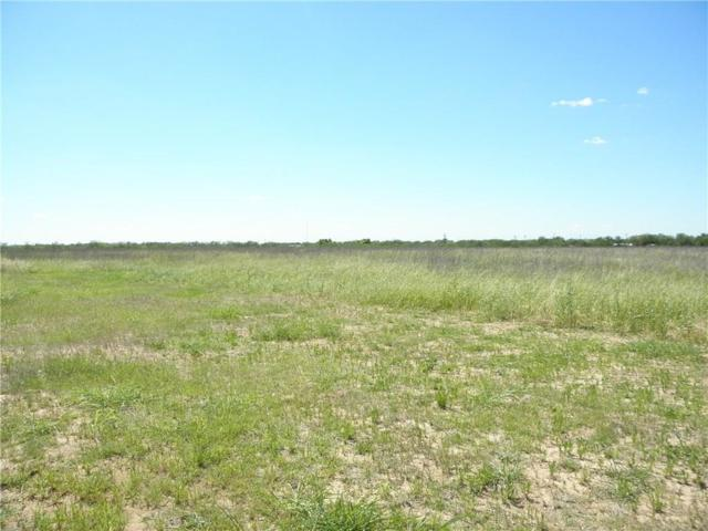 TBD Mccartney, Tye, TX 79563 (MLS #13844742) :: The Tonya Harbin Team