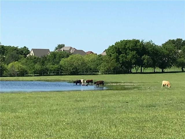 13601A Alexander Road, Pilot Point, TX 76258 (MLS #13845253) :: All Cities Realty