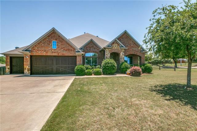 5417 Paloma Blanca Drive, Fort Worth, TX 76179 (MLS #13845262) :: Fort Worth Property Group