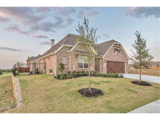 4950 Dolorosa, Prosper, TX 75078 (MLS #13845351) :: Kimberly Davis & Associates