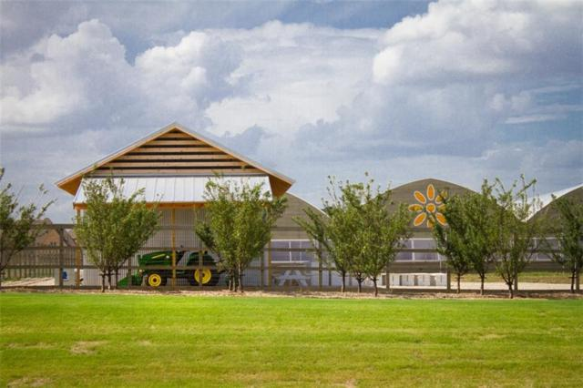1220 10th Street, Argyle, TX 76226 (MLS #13845857) :: The Real Estate Station