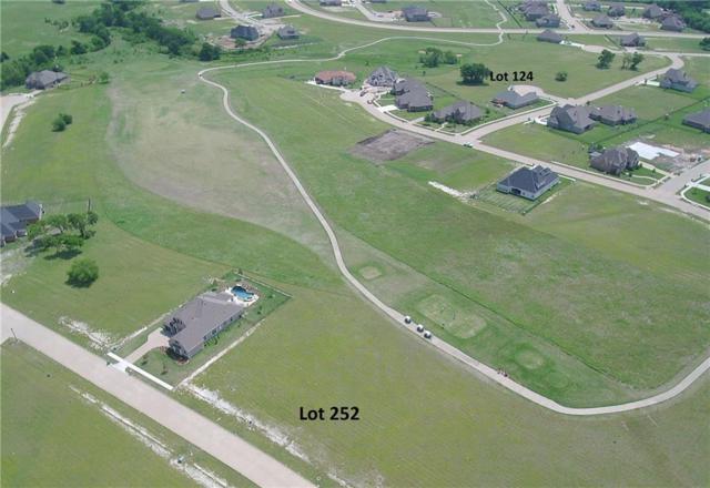 Lot252 Stonebridge Pass, Gunter, TX 75058 (MLS #13846488) :: RE/MAX Performance Group