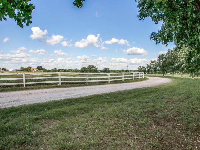 000 Wild Rose Lane, Anna, TX 75409 (MLS #13847080) :: RE/MAX Town & Country