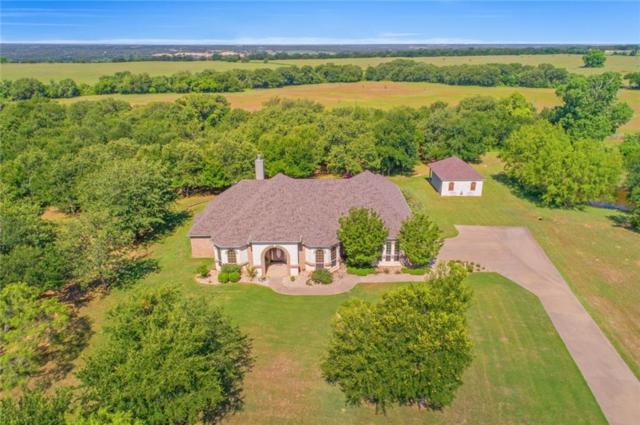 1162 Black Hawk Trail, Nemo, TX 76070 (MLS #13847361) :: RE/MAX Pinnacle Group REALTORS