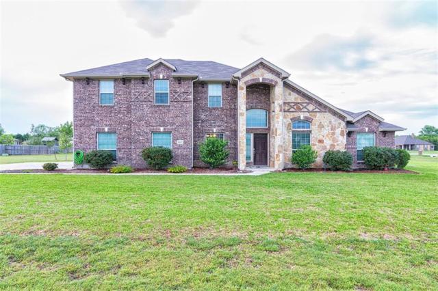 9031 Mattie Lane, Waxahachie, TX 75167 (MLS #13847546) :: RE/MAX Preferred Associates