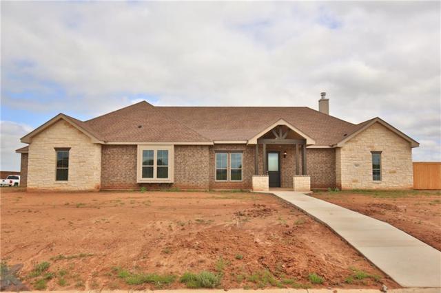 202 Tierra Court, Abilene, TX 79602 (MLS #13847615) :: The Paula Jones Team | RE/MAX of Abilene