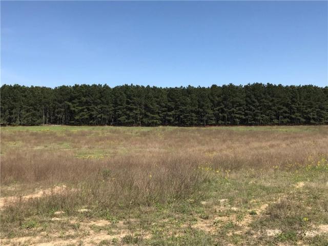 LT 28B Zebra Crossing, Larue, TX 75770 (MLS #13848161) :: Robbins Real Estate Group