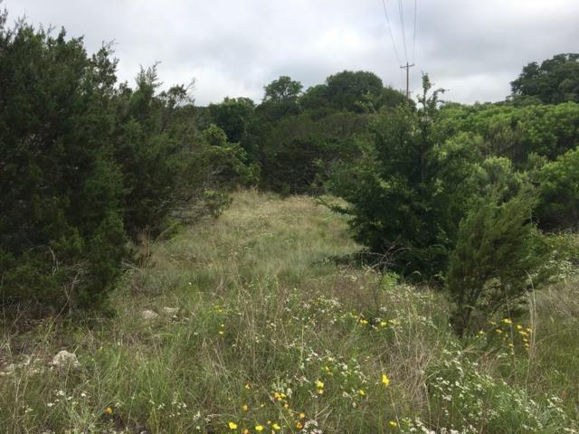 1150 Autumn Valley, Bluff Dale, TX 76433 (MLS #13848817) :: Team Hodnett