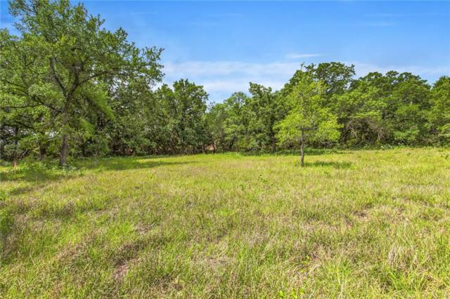 281 Martin Drive, Granbury, TX 76049 (MLS #13848963) :: North Texas Team   RE/MAX Lifestyle Property