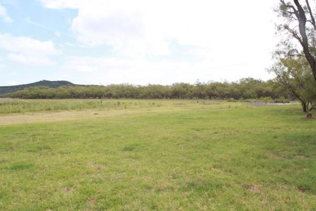 3500 Hog Bend #60, Possum Kingdom Lake, TX 76449 (MLS #13851272) :: Team Hodnett