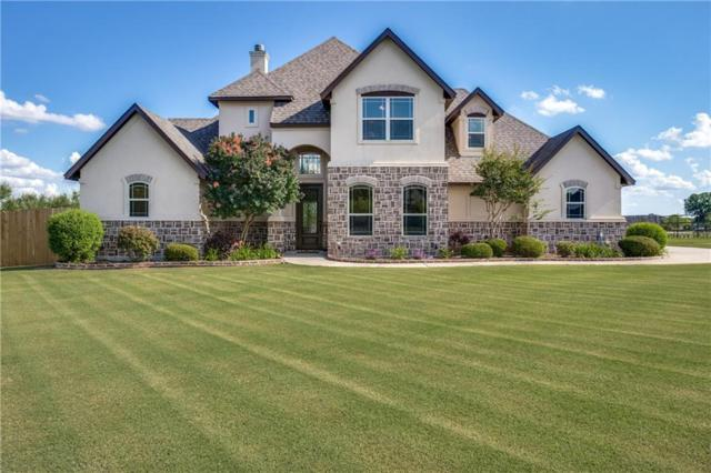 204 Oakwood Creek Court, Weatherford, TX 76088 (MLS #13851422) :: Magnolia Realty