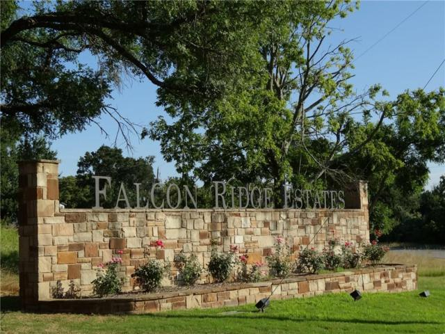 Lot 1 Falcon Drive, Glen Rose, TX 76043 (MLS #13851426) :: Robinson Clay Team