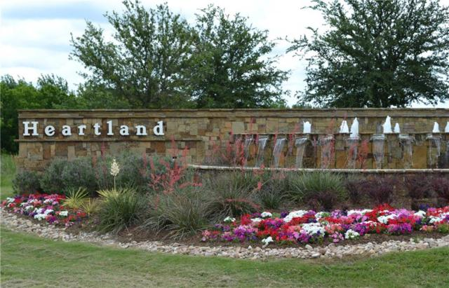 2017 Wellington Point, Heartland, TX 75126 (MLS #13852030) :: Baldree Home Team