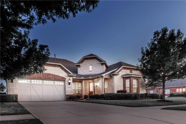 667 Pine Hills Drive, Frisco, TX 75034 (MLS #13852380) :: Magnolia Realty