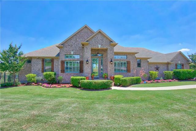 10300 San Simeon Lane, Fort Worth, TX 76179 (MLS #13853433) :: Magnolia Realty