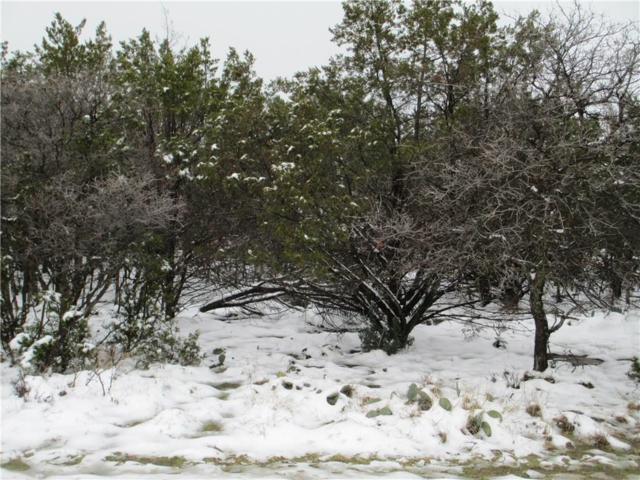 425 Turnberry Loop, Possum Kingdom Lake, TX 76449 (MLS #13854356) :: Robbins Real Estate Group