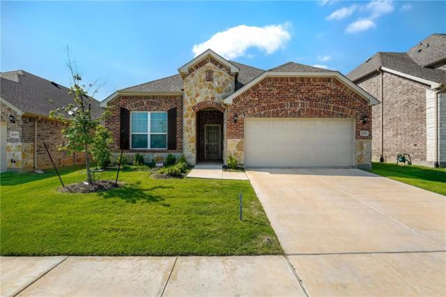 2217 Olivia Lane, Little Elm, TX 75068 (MLS #13856652) :: Magnolia Realty
