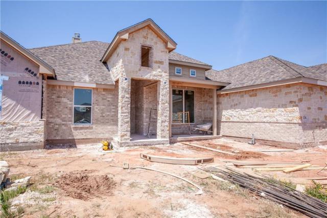 134 Angie Lane, Abilene, TX 79602 (MLS #13856874) :: The Paula Jones Team | RE/MAX of Abilene