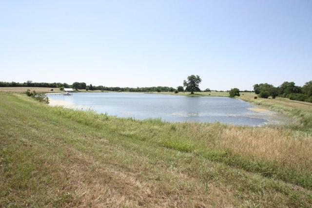 234 E Stark Road, Seagoville, TX 75159 (MLS #13857179) :: The Hornburg Real Estate Group