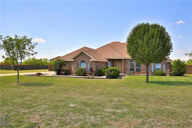 334 Apple Blossom Drive, Abilene, TX 79602 (MLS #13857441) :: Magnolia Realty