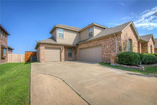 317 Timber, Forney, TX 75126 (MLS #13857571) :: Team Hodnett