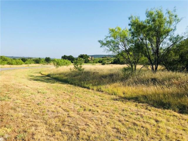 Lt1024 Cinnamon Teal, Possum Kingdom Lake, TX 76449 (MLS #13857693) :: The Rhodes Team