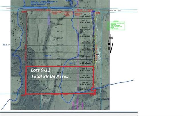 39 Acr Emilia Way, Blue Ridge, TX 75424 (MLS #13859504) :: Team Hodnett