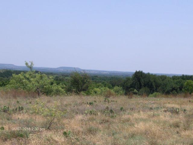 000 Hawk Wood Court, Comanche, TX 76442 (MLS #13862285) :: The Chad Smith Team
